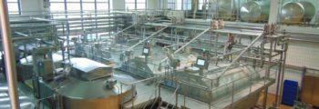 Vier neue Käsefertiger mit modernster Technologie werden installiert